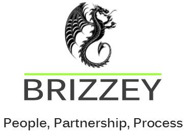 Brizzey logo